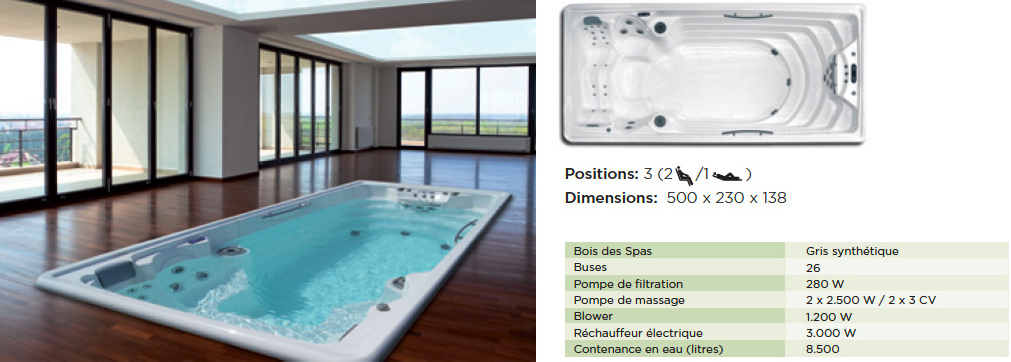 spa de nage vente de spa jacuzzis spa pour nager suisse. Black Bedroom Furniture Sets. Home Design Ideas